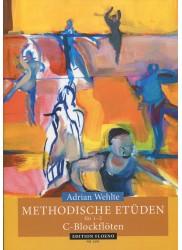 Methodical Studies