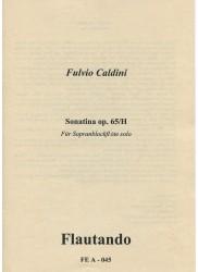 Sonatina op65/H