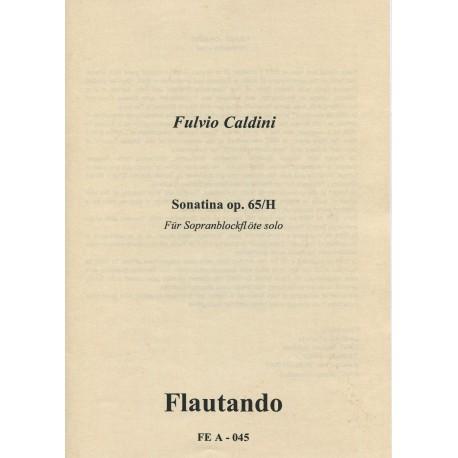 Sonatina op.65/H