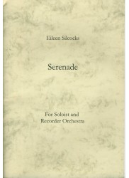Serenade for Soloist and Recorder Orchestra