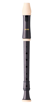 Descant Recorder for the disabled