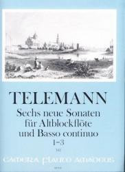 Sechs neue Sonaten fur Altblockflote und Basso continuo