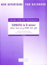Sonata in g minor after Trio in g
