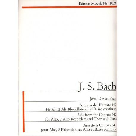 Jesu, Dir sei Preis - Aria from Cantata 142