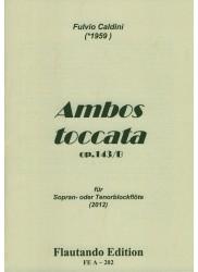 Ambos toccata Op 143/B