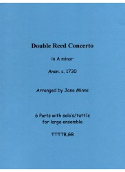 Double Reed Concerto in a minor