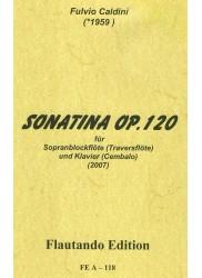 Sonatina Op 120