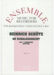 Du Schalksknecht