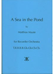 A Sea in the Pond