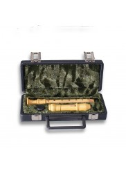 Descant Recorder Hard Case