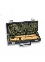 Treble Recorder Hard Case