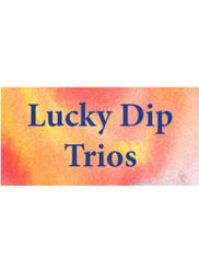 Lucky Dip Trios Recorder