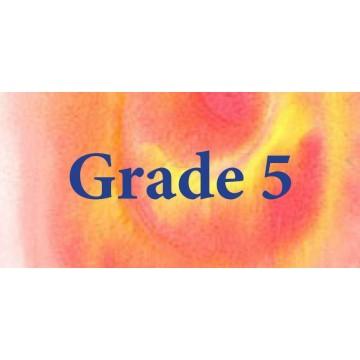 Grade 5