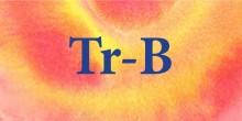Treble - Bass